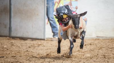 Fritz Olenberger Photography: Rodeo (Competencia de los Vaqueros) &emdash;